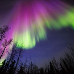 NASA aurora image from April 10, 2015, Delta Junction, Alaska